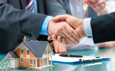 Characteristics of a Great Real Estate Mentor